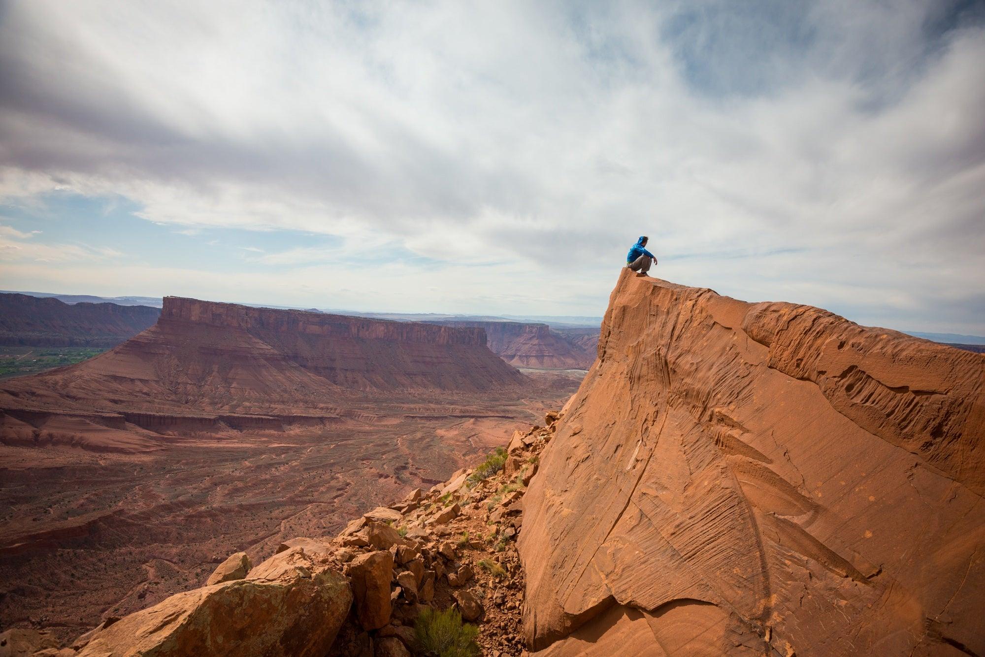 It's Desert Season—Do You Know What Wildlife Is Around You?